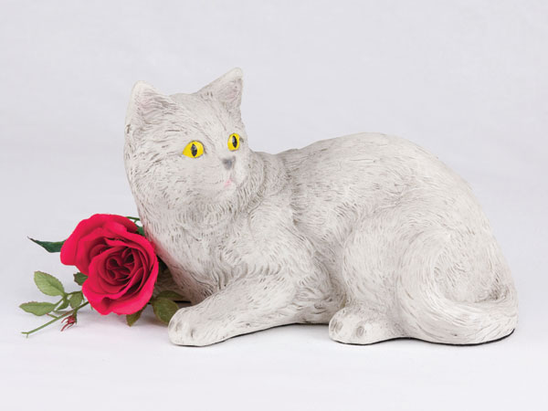 Shorthair Cat - All Gray (light)
