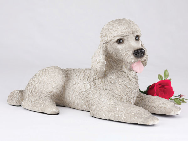Poodle, Standard, Gray