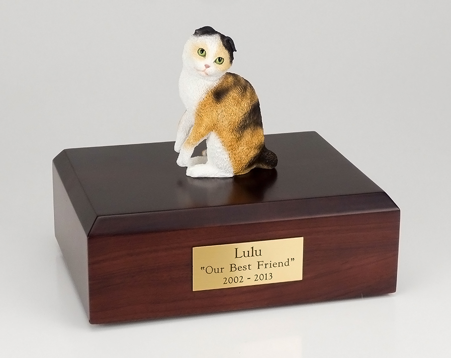 Cat, Scottish Fold, Tort/White - Figurine Urn